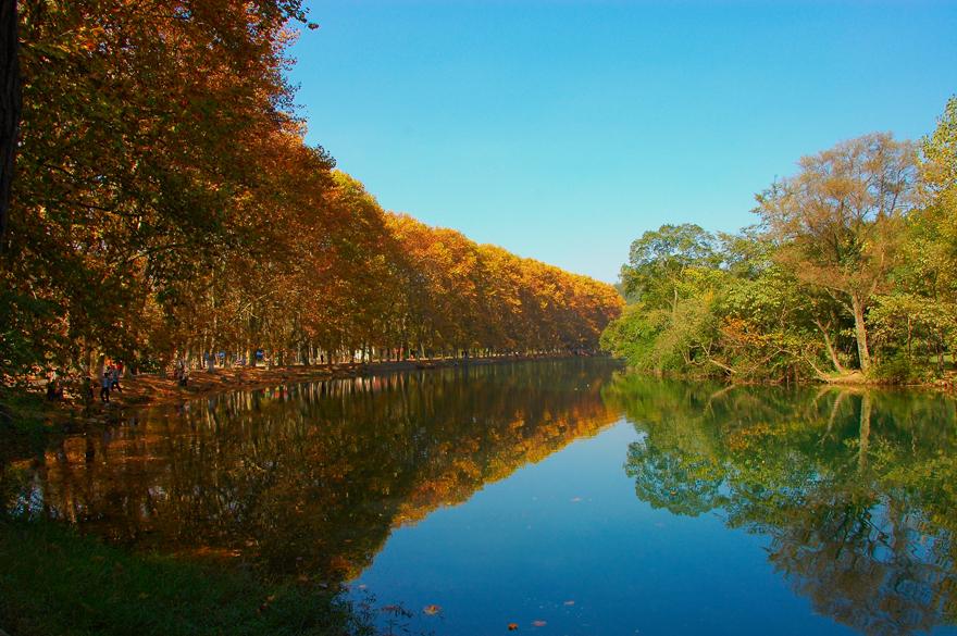 半山风雨半山晴-两年前就想到花溪拍秋景,都遇特殊事情而没有去成,今年十一月一日