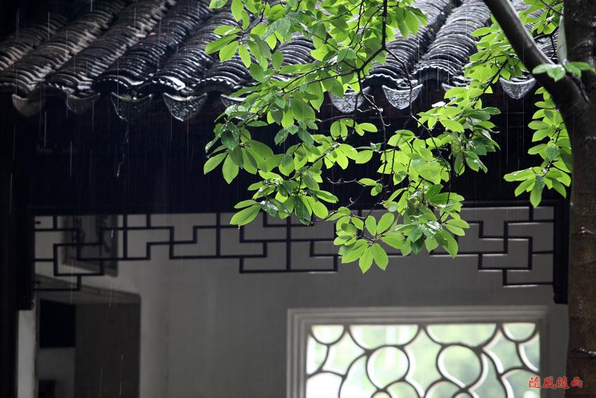 屋檐雨素材图片