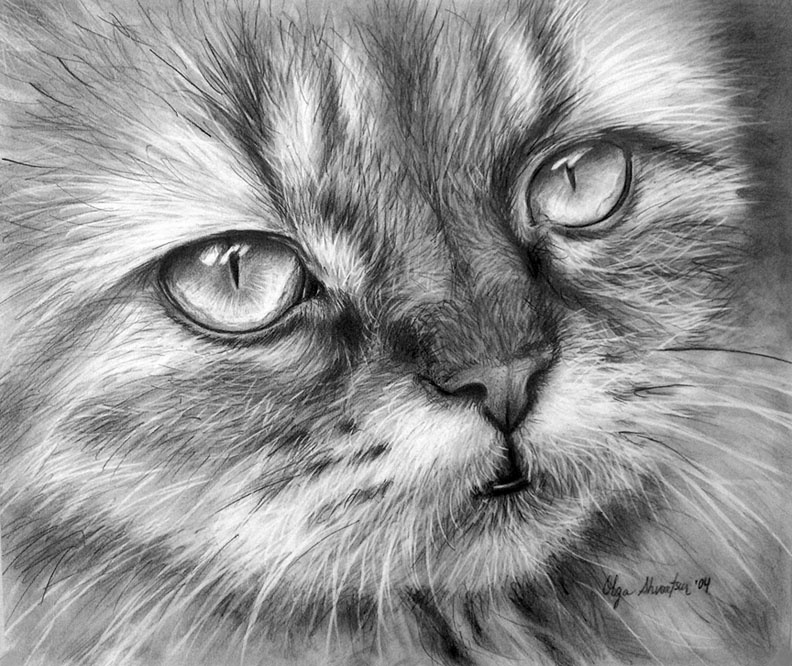 черно белые фото арт ню