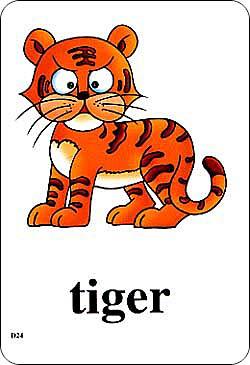 英语动物单词图画