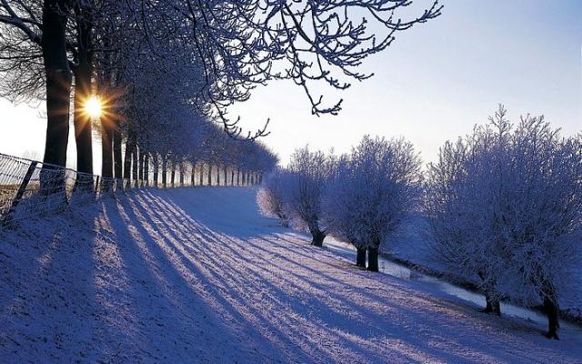 冬天散文诗欣赏
