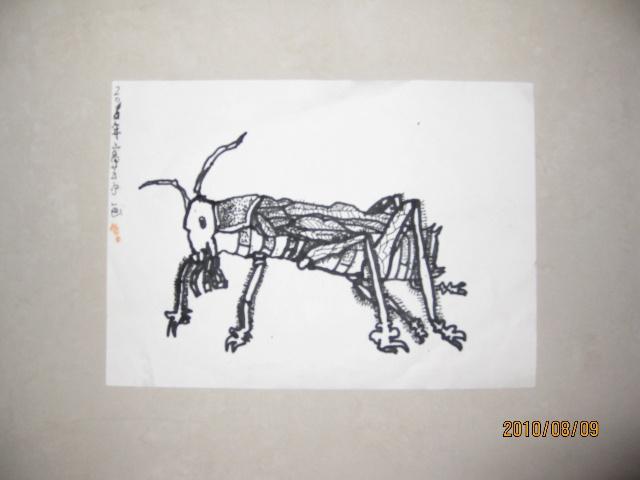 2010年春季画画班,写生.