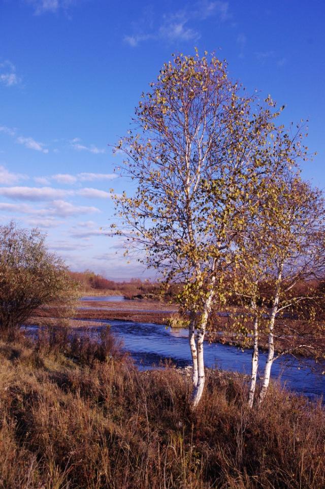 我可爱的家乡-图里河