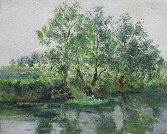 风景写生速写柳树