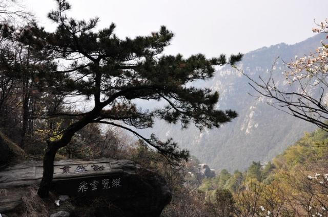 犁头瑶族乡风景