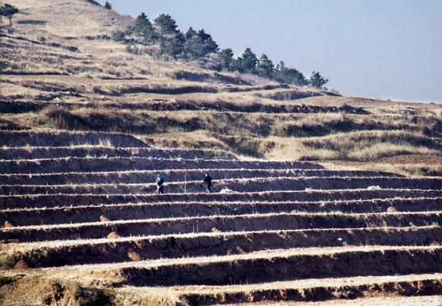 内蒙古敖汉旗 中国真正的绿色杂粮生产基地图片