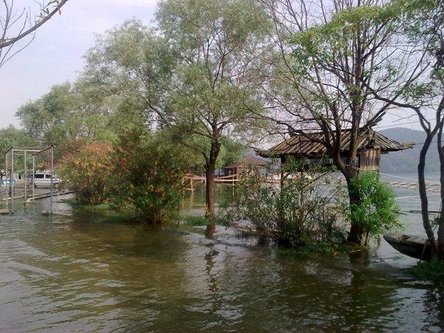 武汉东湖落雁岛