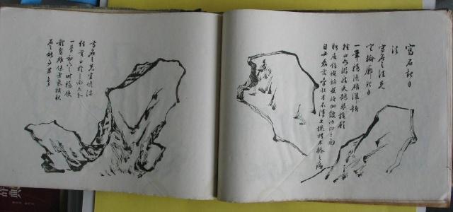 林兰花的素描画法步骤