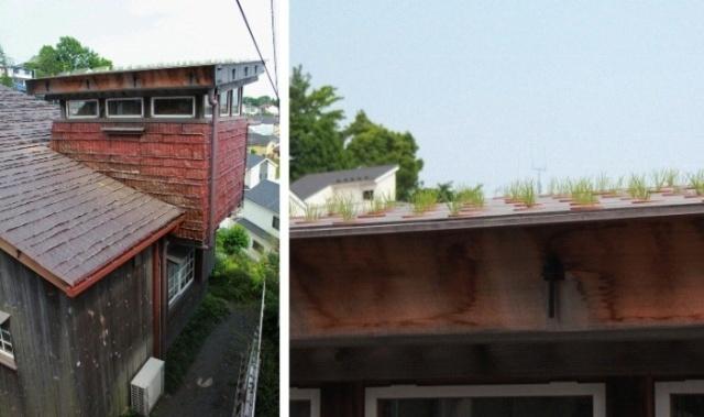 再加上吊桥与木结构房屋的连接也有些比较难处理的问题,藤森先生没有