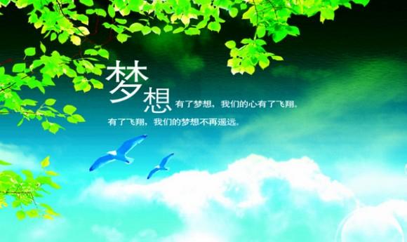 2013我的梦想【文字原创
