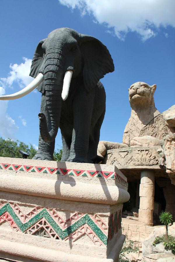 大象 动物 600_900