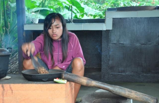 巴厘岛掠影(8):乌布途中咖啡园